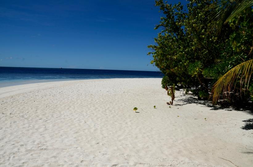 2015 Maldivene - Athuruga 039f.JPG
