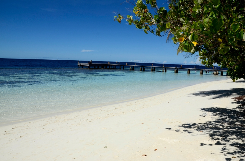 2015 Maldivene - Athuruga 049fc.JPG