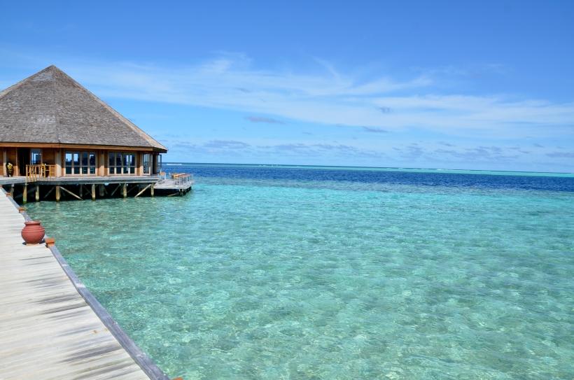2015 Maldivene - Vilamendhoo 054b.JPG