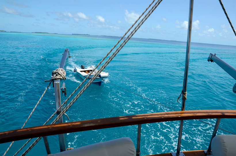 2015 Maldivene - Vilamendhoo 164b.JPG