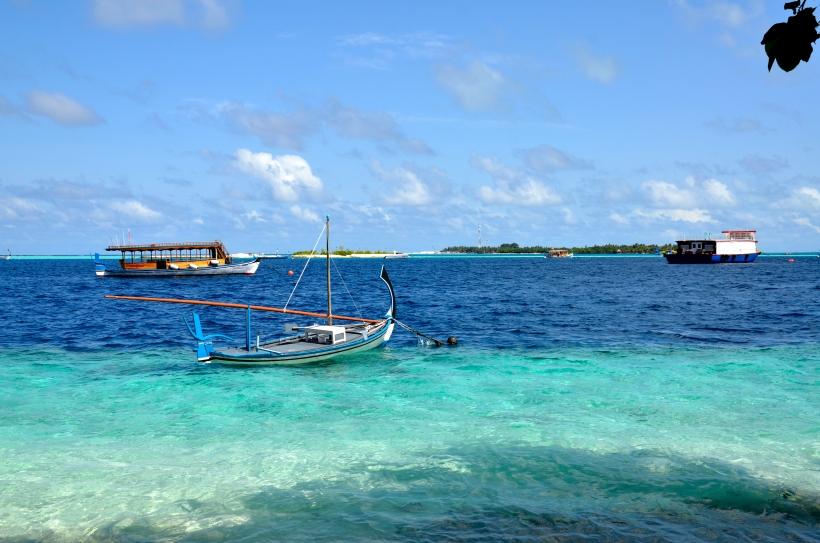 2015 Maldivene - Vilamendhoo 205b.JPG