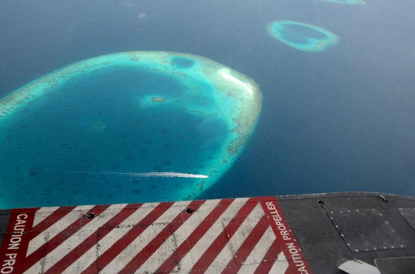 Maldivene 2014 030f.JPG