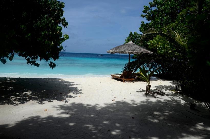 Maldivene 2014 344f.JPG